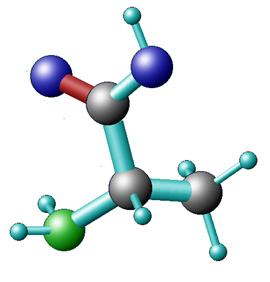 Alanine - 3D representation